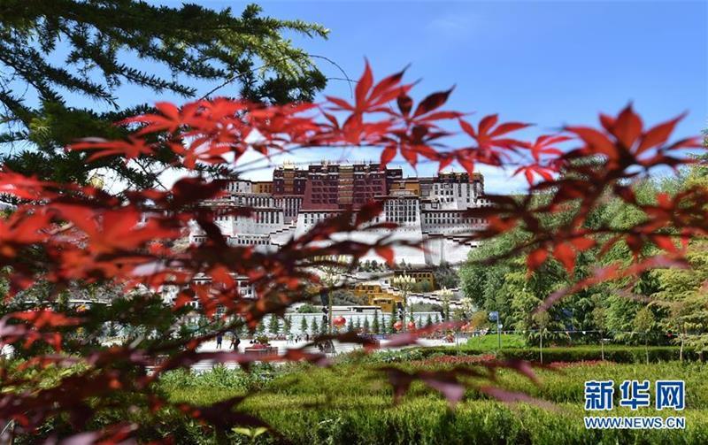 (社会)(3)布达拉宫恢复对外开放